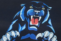 McNeill Panther