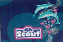 Scout Florida